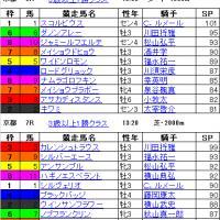 南 関東 競馬 結果